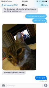 pun it up cat tweet further